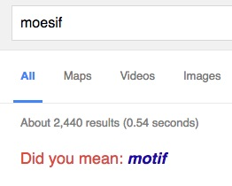 Moesif Search Results